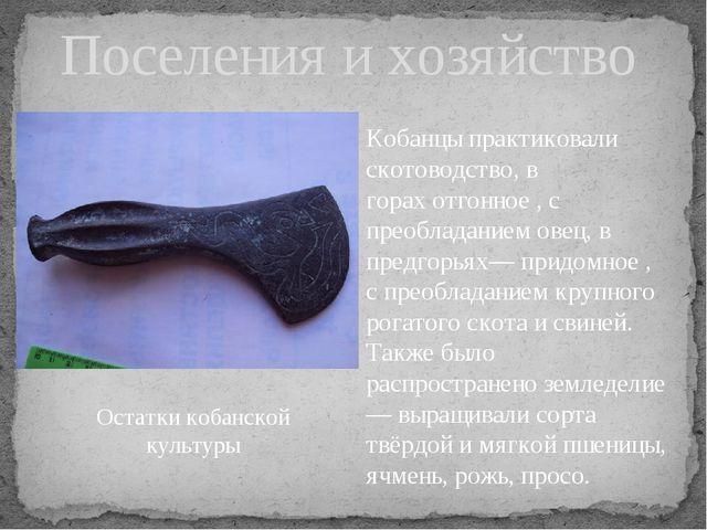 Поселения и хозяйство Кобанцы практиковали скотоводство, в горахотгонное, с...