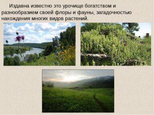 Издавна известно это урочище богатством и разнообразием своей флоры и фауны,