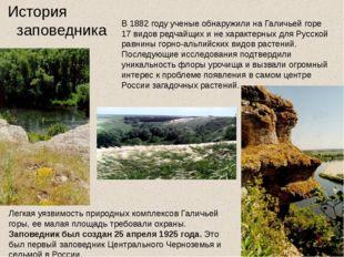 В 1882 году ученые обнаружили на Галичьей горе 17 видов редчайщих и не харак
