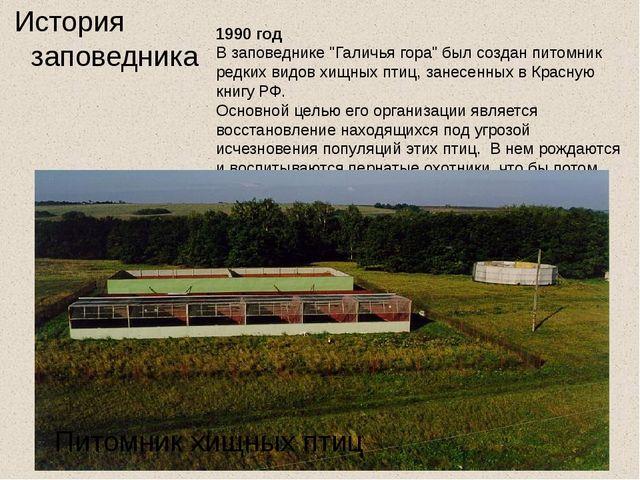"""История заповедника 1990 год В заповеднике """"Галичья гора"""" был созданпитомни..."""