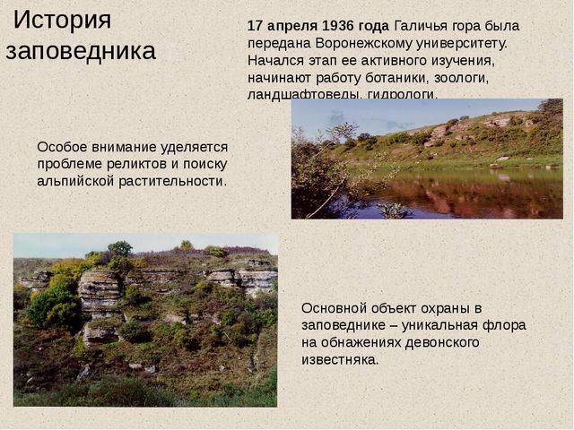 История заповедника 17 апреля 1936 года Галичья гора была переданаВоронежск...