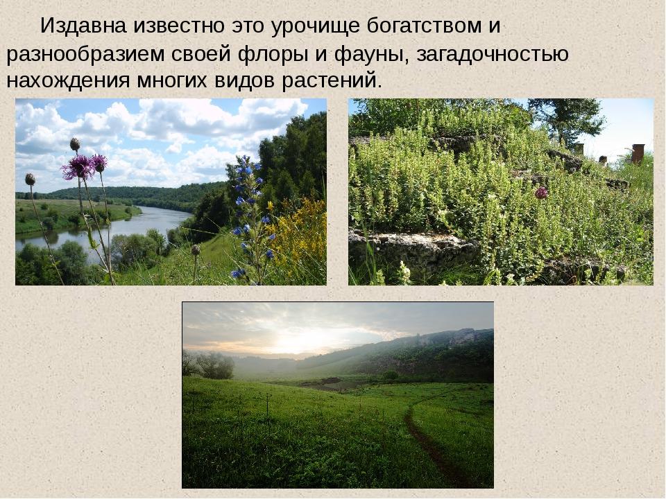 Издавна известно это урочище богатством и разнообразием своей флоры и фауны,...