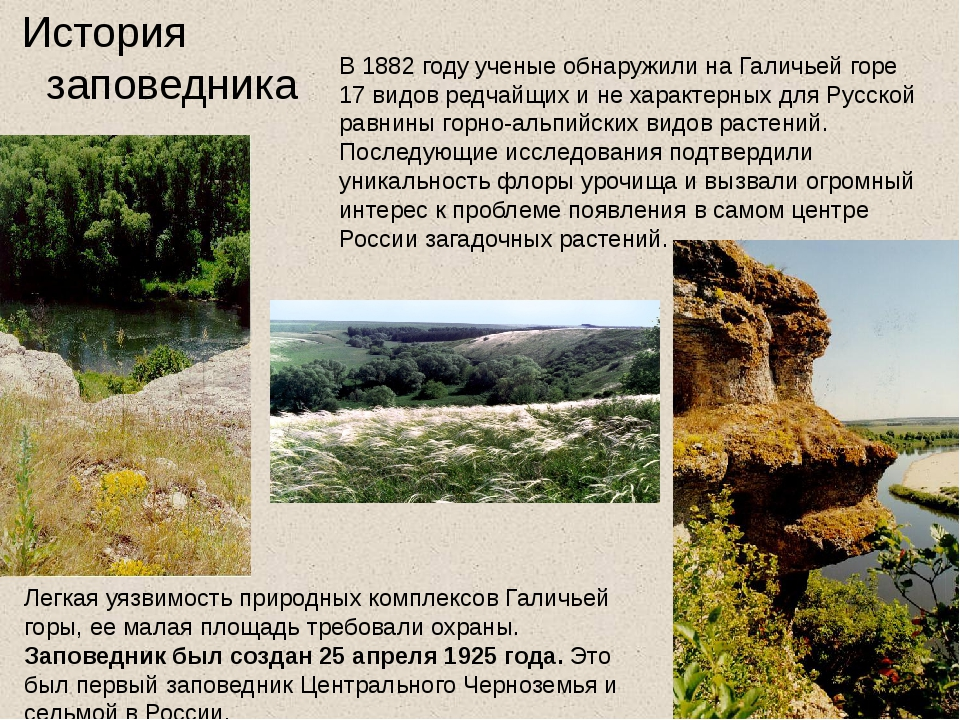 В 1882 году ученые обнаружили на Галичьей горе 17 видов редчайщих и не харак...