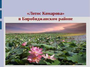 «Лотос Комарова» в Биробиджанском районе
