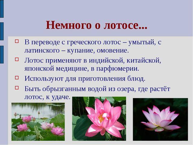 Немного о лотосе... В переводе с греческого лотос – умытый, с латинского – ку...
