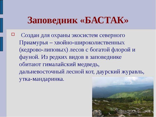Заповедник «БАСТАК» Создан для охраны экосистем северного Приамурья – хвойно-...