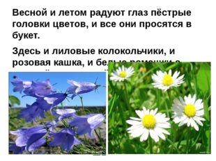 Весной и летом радуют глаз пёстрые головки цветов, и все они просятся в букет