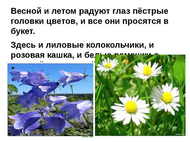 Весной и летом радуют глаз пёстрые головки цветов, и все они просятся в букет...