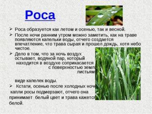 Роса Роса образуется как летом и осенью, так и весной. После ночи ранним утро