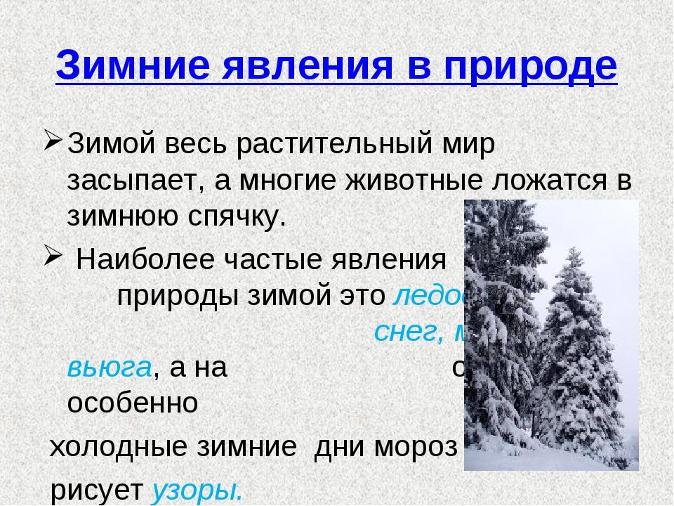 Зимние явления в природе Зимой весь растительный мир засыпает, а многие живот...