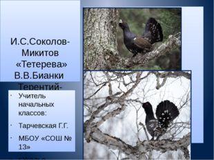 И.С.Соколов-Микитов «Тетерева» В.В.Бианки Терентий-тетерев» Учитель начальны
