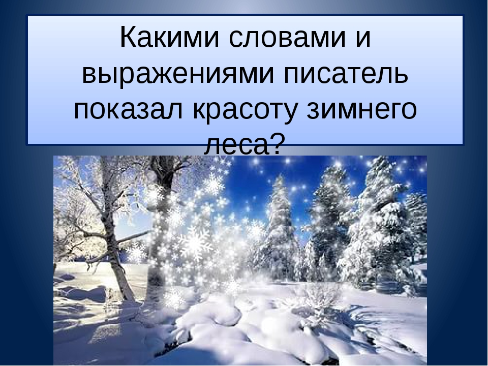 Какими словами и выражениями писатель показал красоту зимнего леса?