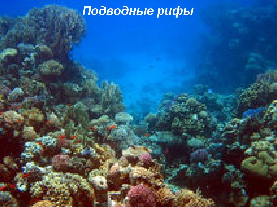 Подводные рифы http://ku4mina.ucoz.ru/