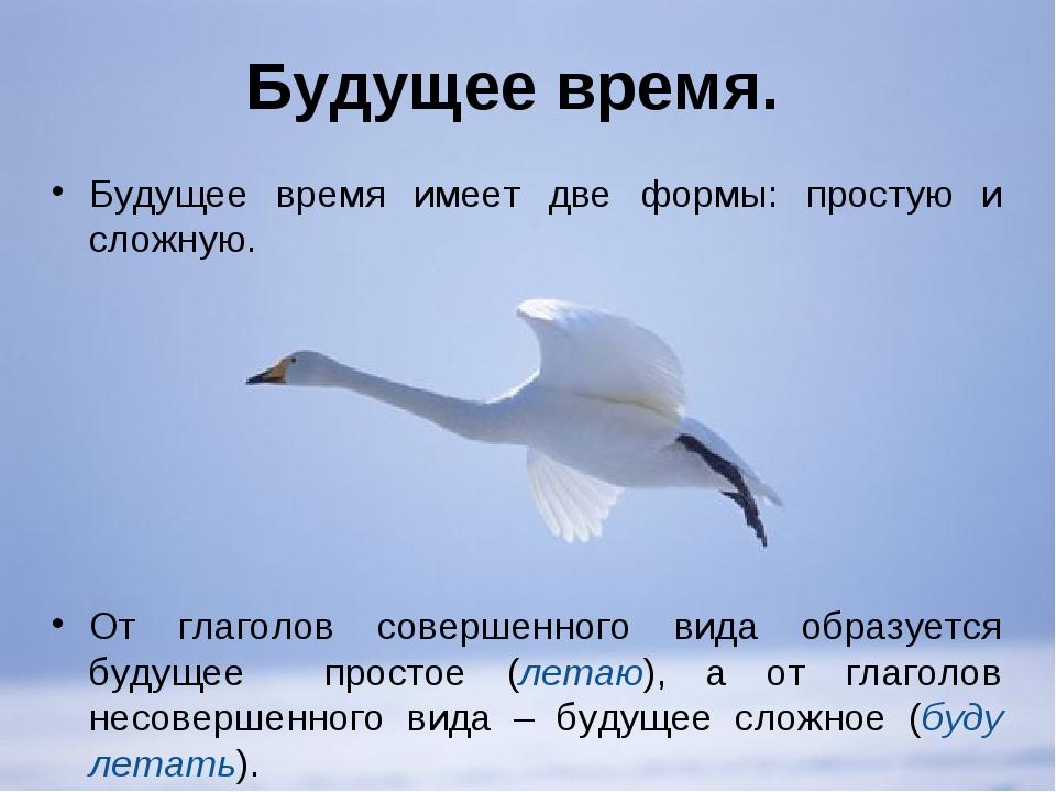 Будущее время. Будущее время имеет две формы: простую и сложную. От глаголов...