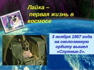 3 ноября 1957 года на околоземную орбиту вышел «Спутник-2». Лайка – первая ж