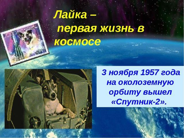 3 ноября 1957 года на околоземную орбиту вышел «Спутник-2». Лайка – первая ж...