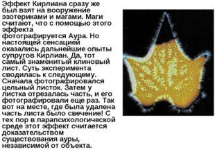 Эффект Кирлианасразу же был взят на вооружение эзотериками и магами. Маги сч