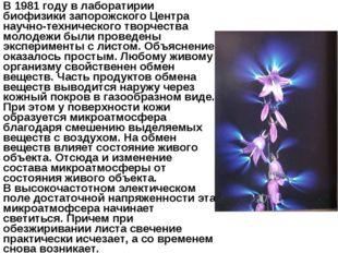 В 1981 году в лаборатирии биофизики запорожского Центра научно-технического т