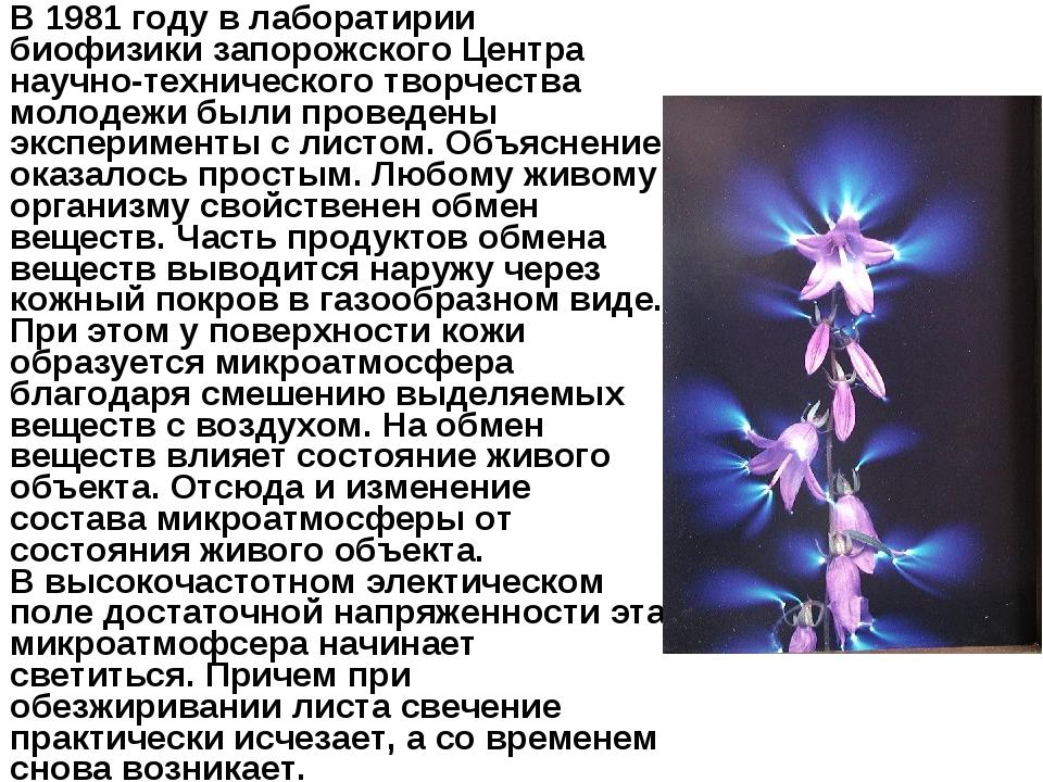 В 1981 году в лаборатирии биофизики запорожского Центра научно-технического т...