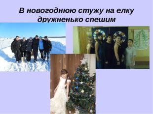 В новогоднюю стужу на елку дружненько спешим