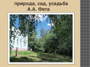 природа, сад, усадьба А.А. Фета