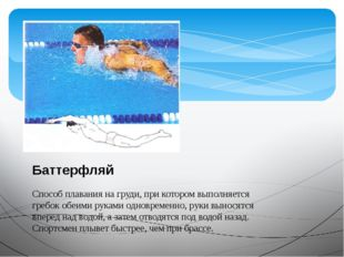 Баттерфляй Способ плавания на груди, при котором выполняется гребок обеими ру