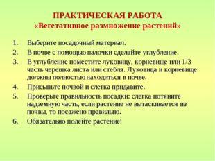 ПРАКТИЧЕСКАЯ РАБОТА «Вегетативное размножение растений» Выберите посадочный м