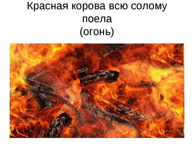 Красная корова всю солому поела (огонь)