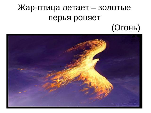 Жар-птица летает – золотые перья роняет (Огонь)