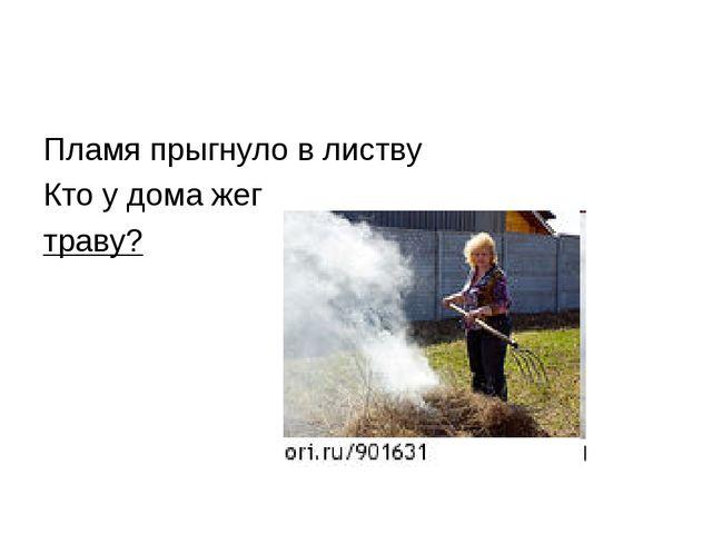 Пламя прыгнуло в листву Кто у дома жег траву?