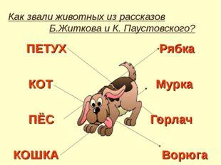 Как звали животных из рассказов Б.Житкова и К. Паустовского? ПЕТУХ Рябка КОТ