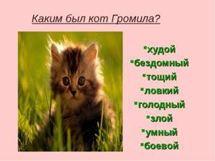 Каким был кот Громила? худой бездомный тощий ловкий голодный злой умный боевой