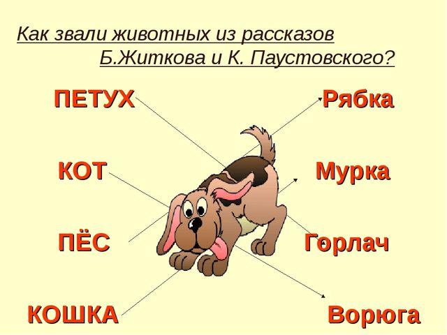 Как звали животных из рассказов Б.Житкова и К. Паустовского? ПЕТУХ Рябка КОТ...