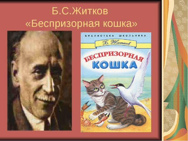 Б.С.Житков «Беспризорная кошка»