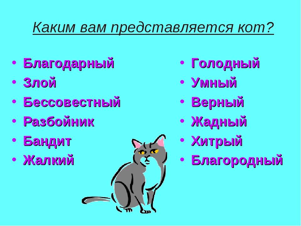 Каким вам представляется кот? Благодарный Злой Бессовестный Разбойник Бандит...