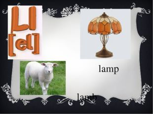 lamp lamb