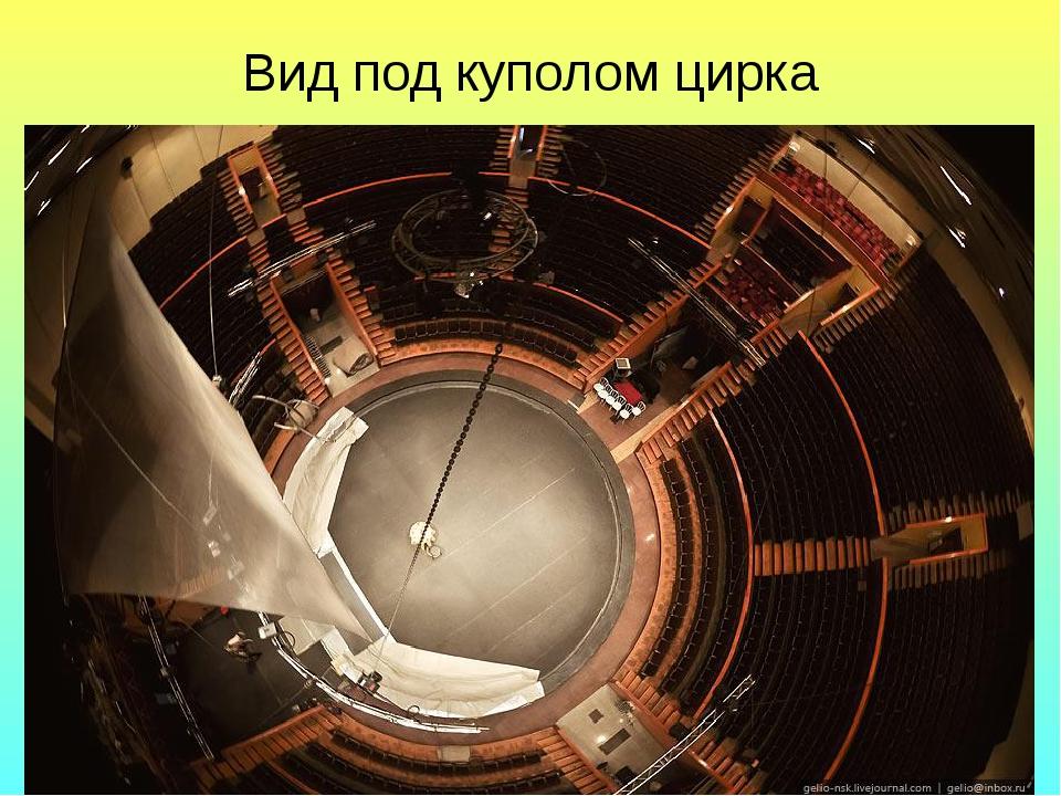Вид под куполом цирка