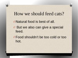 How we should feed cats? Natural food is best of all. But we also can give a