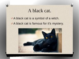 A black cat. A black cat is a symbol of a witch. A black cat is famous for it