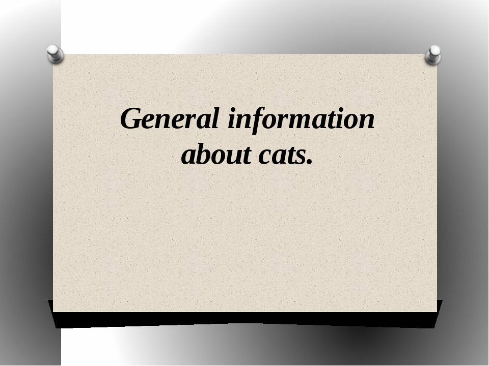 General information about cats.