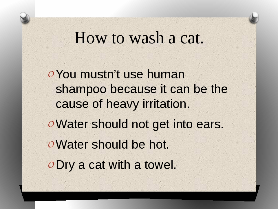 How to wash a cat. You mustn't use human shampoo because it can be the cause...