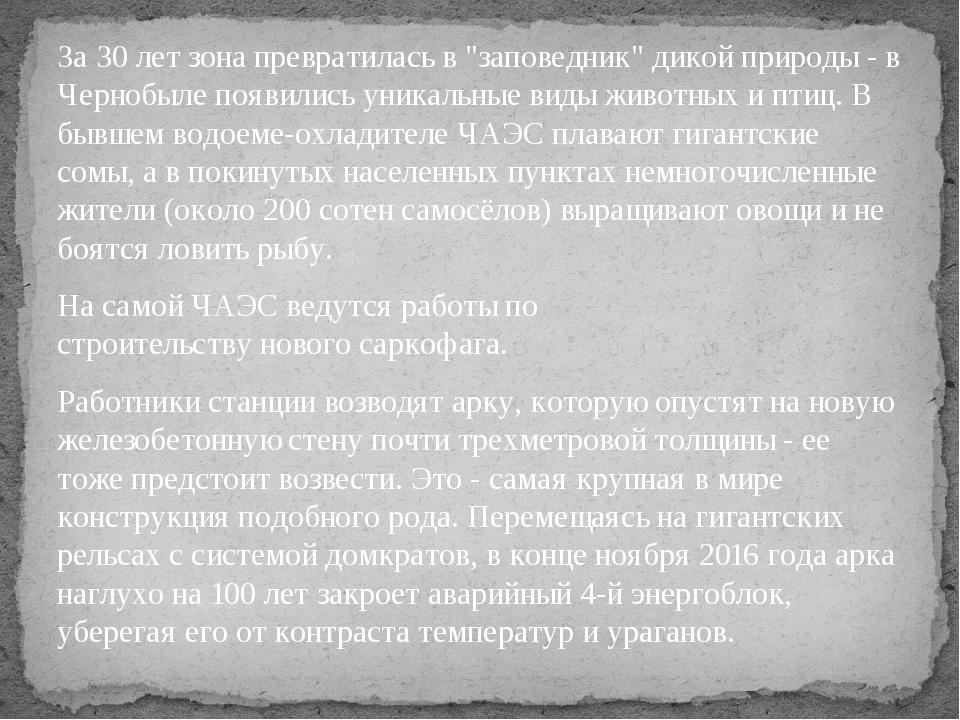 """За 30 лет зона превратилась в""""заповедник"""" дикой природы - в Чернобылепоявил..."""