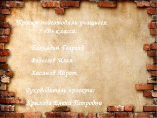 Проект подготовили учащиеся 3 «В» класса: Бахолдин Георгий Федосеев Илья Хас