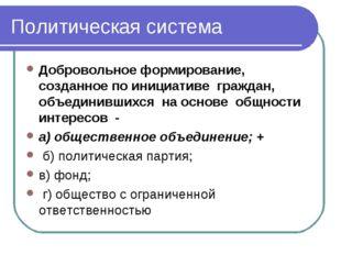 Политическая система Добровольное формирование, созданное по инициативе гражд