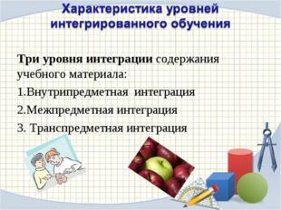 Три уровня интеграции содержания учебного материала: Внутрипредметная интегра