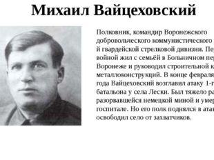 Полковник, командир Воронежского добровольческого коммунистического полка 1-й
