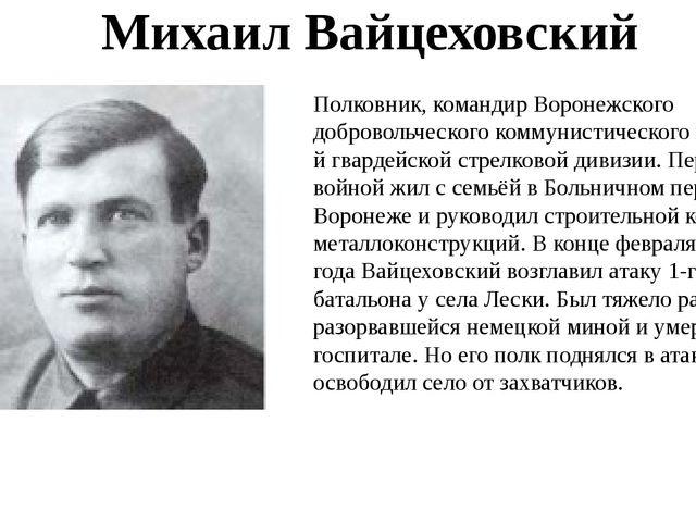 Полковник, командир Воронежского добровольческого коммунистического полка 1-й...