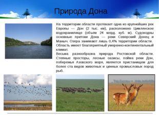 На территории области протекает одна из крупнейших рек Европы — Дон (2 тыс.