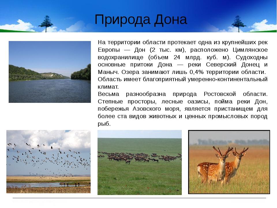 На территории области протекает одна из крупнейших рек Европы — Дон (2 тыс....