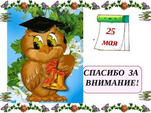 СПАСИБО ЗА ВНИМАНИЕ! 25 мая